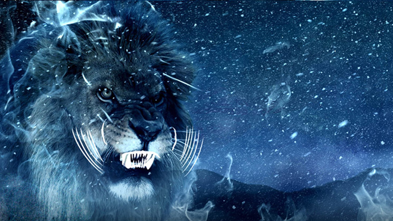 Cannes Lions 2014: Gala Graphics