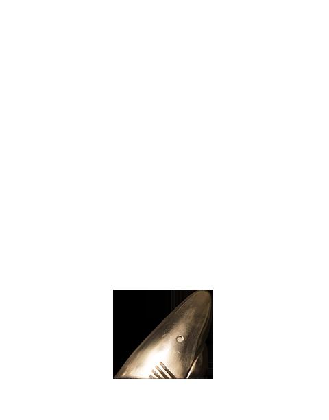 Kinsale Sharks