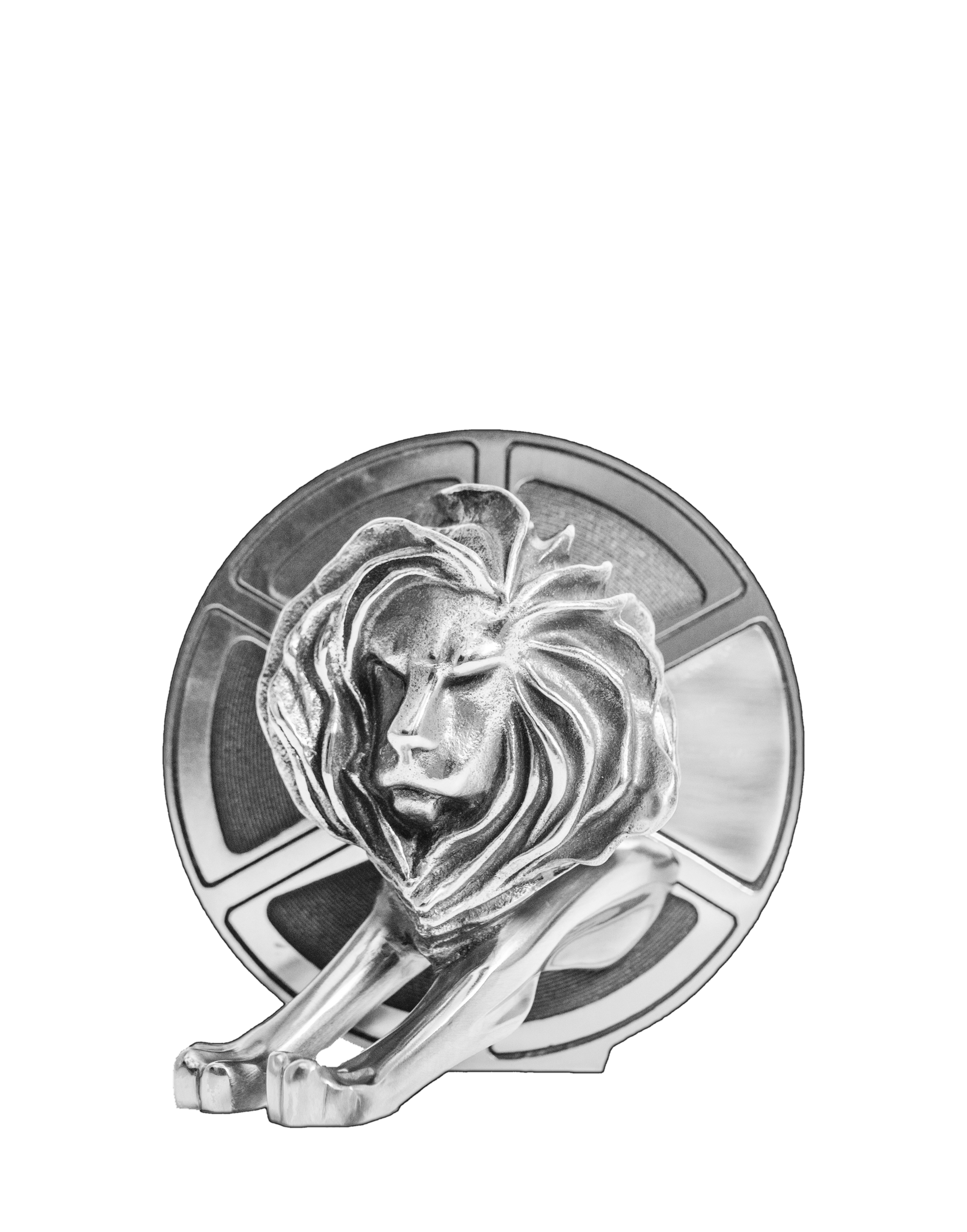 Cannes Lions Awards